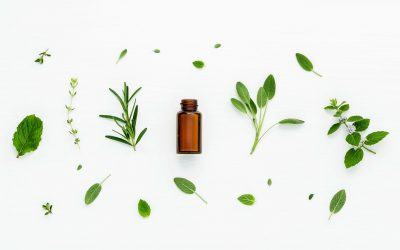 Qu'est-ce que la naturopathie et la micronutrition ? Mon approche